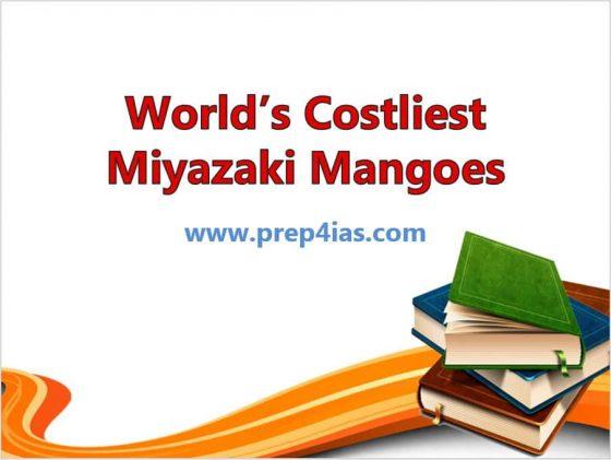 Important Information About World's Costliest Miyazaki Mangoes